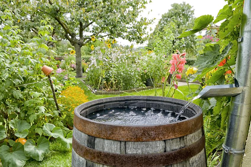 Regenwasser Sammeln Mit Wasserklappe Und Wassersammler Blechshop24